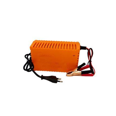 Gamistar 12v 20Amp Intelligent Pulse Battery Charger